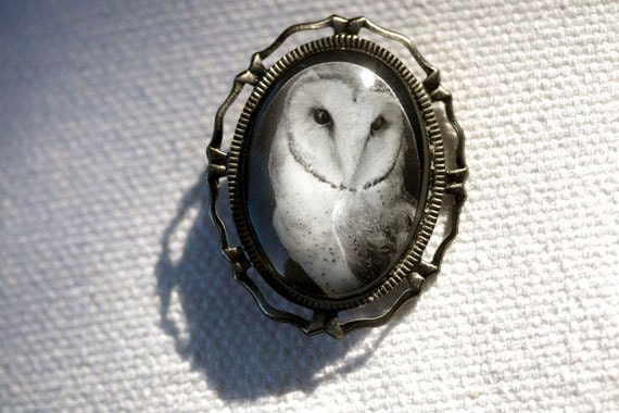 Autumn Brooch  Owl.  Art Pin Featuring Black And White Photograph Of A Barn Owl In An Antiqued Silver Color Metal Setting