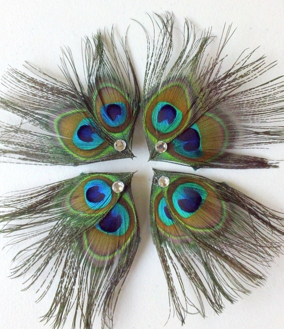 On SALE this week- Set of 8 Peacock Feather Hair Clips