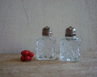 Dainty Glass Shakers