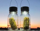 Harvest Lanterns Corn Mason Jars Outdoor Decoration, Garden,  Mason Jar Solar Lights