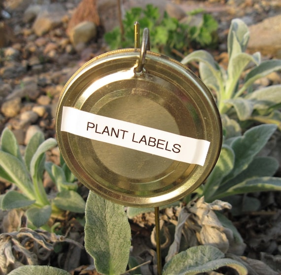 10 Plant Marker Labels, recycled Tin Lids and Wire, set of 10
