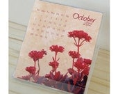 2012 Flower Photography Desk Calendar