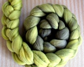 BFL/Silk  Combed Top 4 Oz. Charcoal Seaweed Gradient