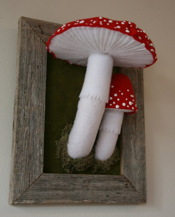 Large Toadstools in Barnwood Frame