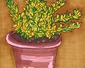 Plant-5x7 inch Print from Original Illustration