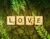 LOVE : abstract photography valentine pop art scrabble surreal woodland earth forest fern green home decor 8x10 11x14 16x20 20x24 24x30