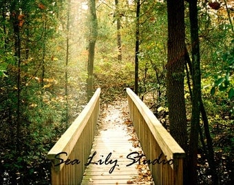 Rainbow Bridge : forest trees path green gold golden sunlight peace serenity afterlife home 8x10 11x14 16x20 20x24 24x30