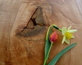 Organic Original Salvaged Wood Serving Tray 163