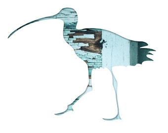 bird silhouette art in mint, 11x14 bird print, sandpiper, blue, cyan, reclaimed wood photography, woodland decor, whimsical animal art