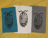 Pill Bug Patch -  Black on Turqoise, White, or Grey durable cloth - insect bug critter punk patches, roly poly, arthropod, animal