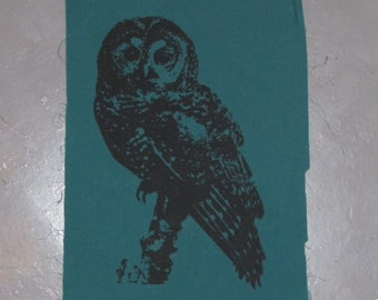 Owl Patch - Northern Spotted Owl - choose color - hoot patch, owls are not what they seem, owl bird nature punk wild cascadia forest, eco