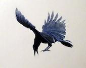 Original  - Raven On The Run - Acrylic on canvas wrap  20 x 20