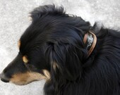 Pet Collar in Brown Natural Leather with Embedded ID Plate, for Large Pets