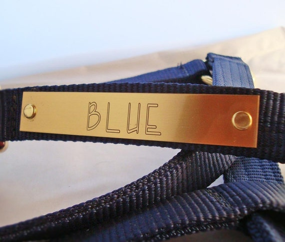 Horse Halter Plate in Brass, Personally Engraved