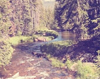 Vintage Style River Photograph, Forest Photography, Vintage Landscape