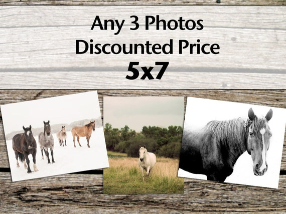 Any 3 Photos, Size 5x7, Fine Art Photography, Equestrian Photography