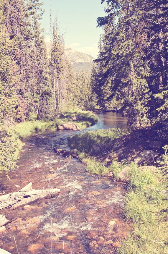 Items similar to Vintage Style River Photograph, Forest ...