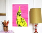 The Cockatiel A3 Print