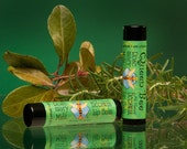Rosemary-Mint beeswax lipbalm