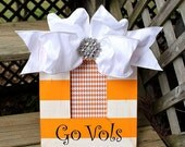 Handpainted picture frame-Tennessee Volunteers