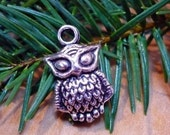 OWL Charm Pendants Antiqued Silver Color Wisdom Graduation Chi Omega 6 Count
