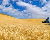 Country photography - Farm Photography - Photo Art - 12X18 -  Prints - The Palouse - Eastern Washington