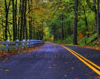 "Autumn  Photography - Columbia Gorge Historic Highway - Fine Art Photography - Photo Art - Fall Colors  16 X 24"" print -"
