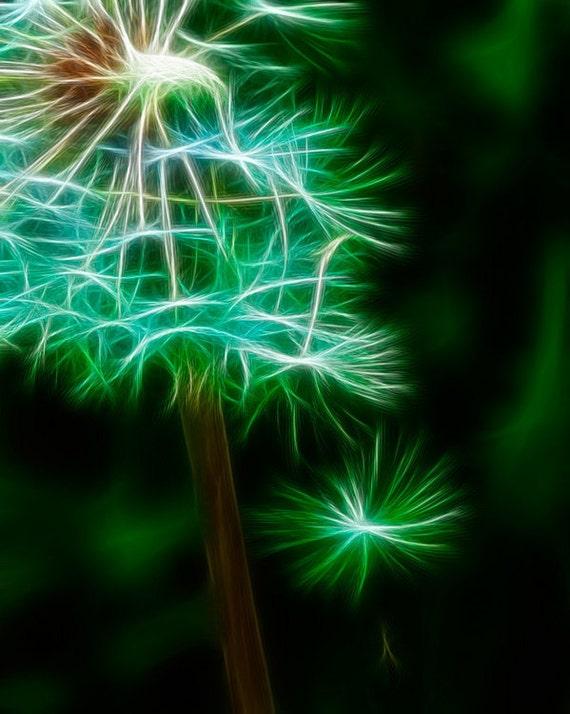 "Dandelion Art -Paul Harrett Photography- 8x10"" Fine Art Print - Flower Photography - Home Decor - Macro - Surreal"
