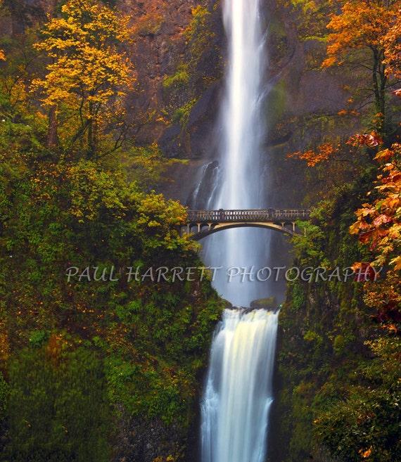 "Fine art Photogaphy -  Multnomah Falls - Photo Art - Waterfall - Fall Colors -  24 X 20"" - Print - Fall Decor - rustic home decor"