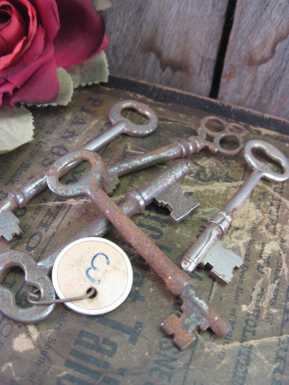 Rusty Skeleton Keys Collection with Tag  (Ref 311)