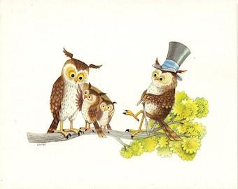 Owls Art Prints Set Of 4 Vintage