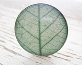 Grass Green Leaf Ring - Round