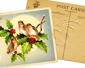 Christmas Postcard, Digital Download, Bird Illustration, Ephemera, Printable Images