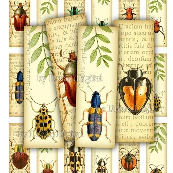 Insect Digital Collage Sheet, 1 x 3 inch, Bugs, Digital Download, Printable Insects