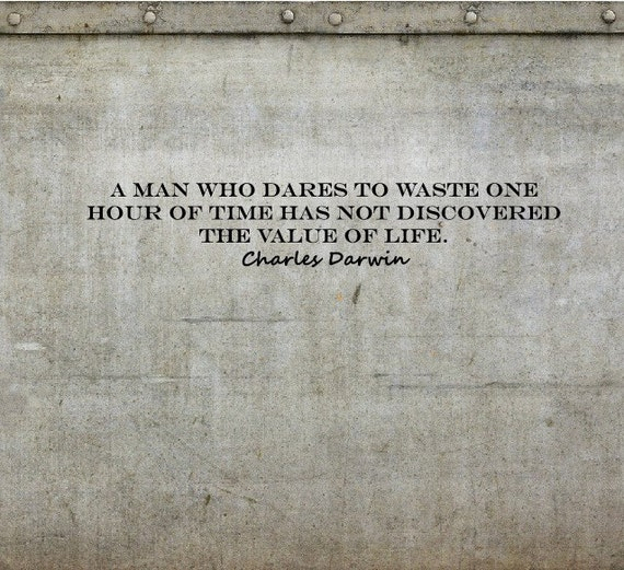 Time Wasted Quotes: Items Similar To Charles Darwin Quotes On Wasting Time