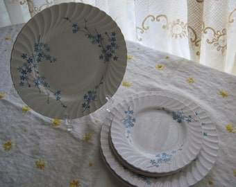 Rare, Burgess and Leigh Burleighware Fairfax Ironstone English China.