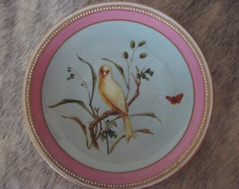 Royal Worcester Canary Cabinet Plate, made for Richard Briggs, Boston