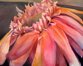Gerbera - floral fine art watercolor painting Giclee Print - open edition by SriWatercolors - 11 x 14 in