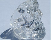 Skull Ring - Ice Clear Resin