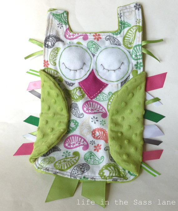 Paisley Print OWL Ribbon Tag Baby Blanket in Pink and Green Minky Blankie Lovey Lovie Baby Gift