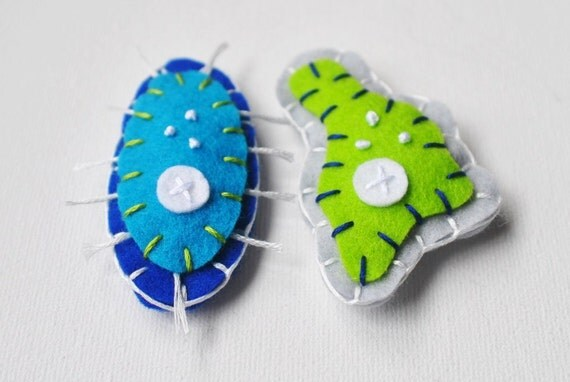 Science Microbe Magnet Pair - Amoeba and Paramecium Felt Magnets - Biology Microbiology Geeky