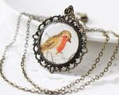 Robin Bird Woodland Vintage Art Pendant Necklace