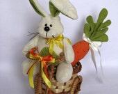 Bunny with trike