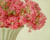 GRACE, fine art photograph, flowers, pink, green, nature, home decor