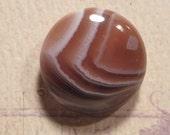 Botswana Agate                     20 x  5 mm                       E BA1752