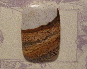 Picture Jasper cab...........      47 x 31 x 6 mm thick .......        3725
