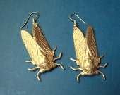 cicada earrings - brass insect jewelry