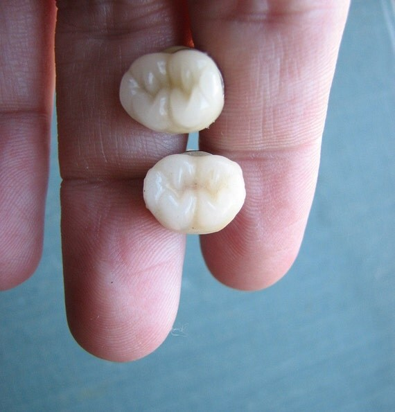 molar cuff links - human teeth tooth mens cufflinks