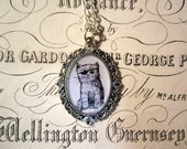 Pirate Kitty Vintage Style Cameo Necklace