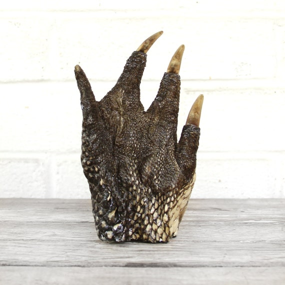giant alligator foot